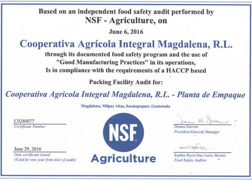 Good Manufacturing Practices Certificate